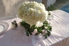 South-Padre-Island-Weddings-Beach-Wedding-Wedding-Venues-Wedding-Planner-South-Padre-Island-Weddings-by-Wendi-32